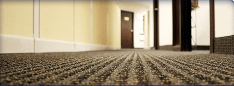 Commercial Carpet Cleaning Works | Steamatic Geelong | Professional